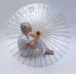 The Brelli Umbrella