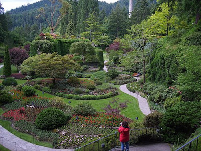 The Butchart Gardens (15) 1