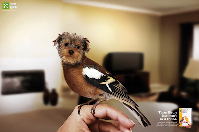 10 Creative Pet Food Advertisements (11) 1