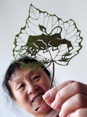 Beautiful Leaf Art (21) 10