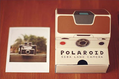 12 Creative and Cool Paper Camera Designs (18) 13