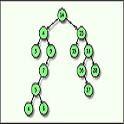 Recorrido en Árboles Binarios [Java - PreOrden - InOrden - PostOrden]