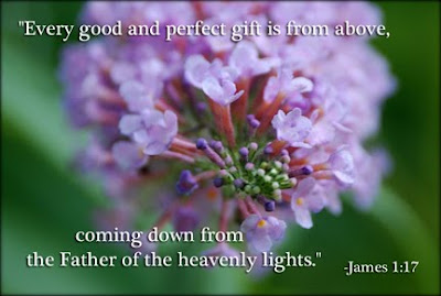 James 1:17 every good and perfect gift is from above