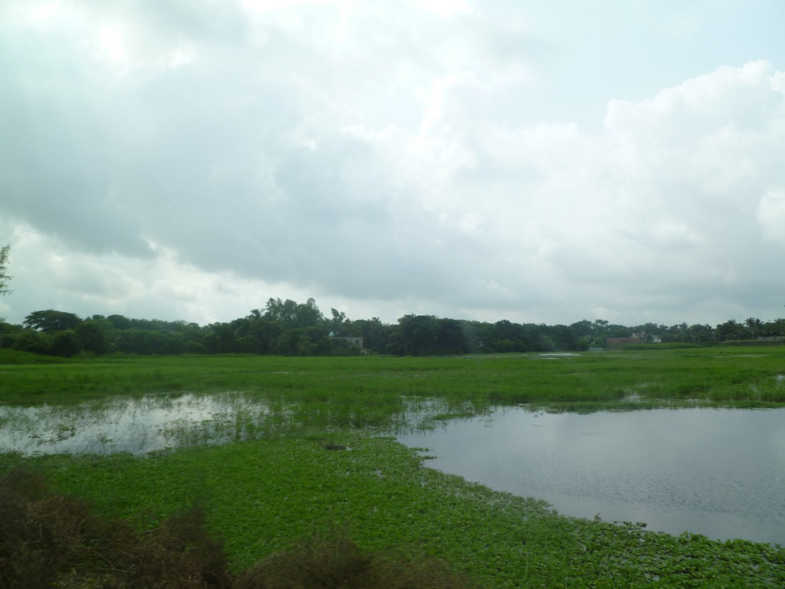 Cecilia Wikstrom Bangladesh Part 4
