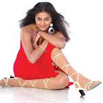 South Indian Hot Actress Priyamani Exclusive Photo Shoot