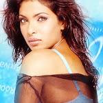 North Indian Actress Priyanka Chopra Wallpapers,profile,biography,filmography