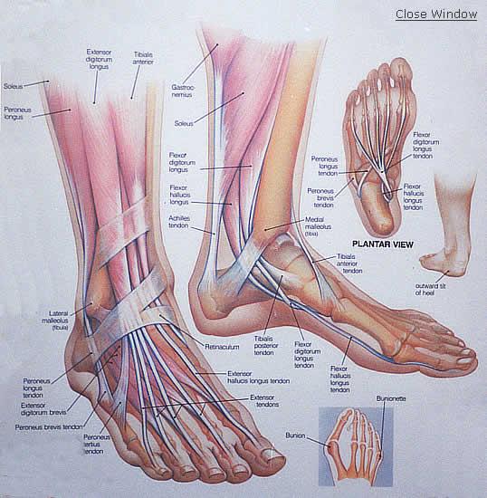 szárnyaló lábak ízületi fájdalommal fájdalom az egyik oldalon az összes ízületben
