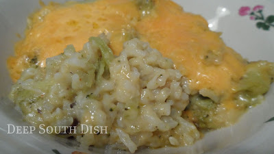 recipe: chicken broccoli cheese rice casserole velveeta [39]