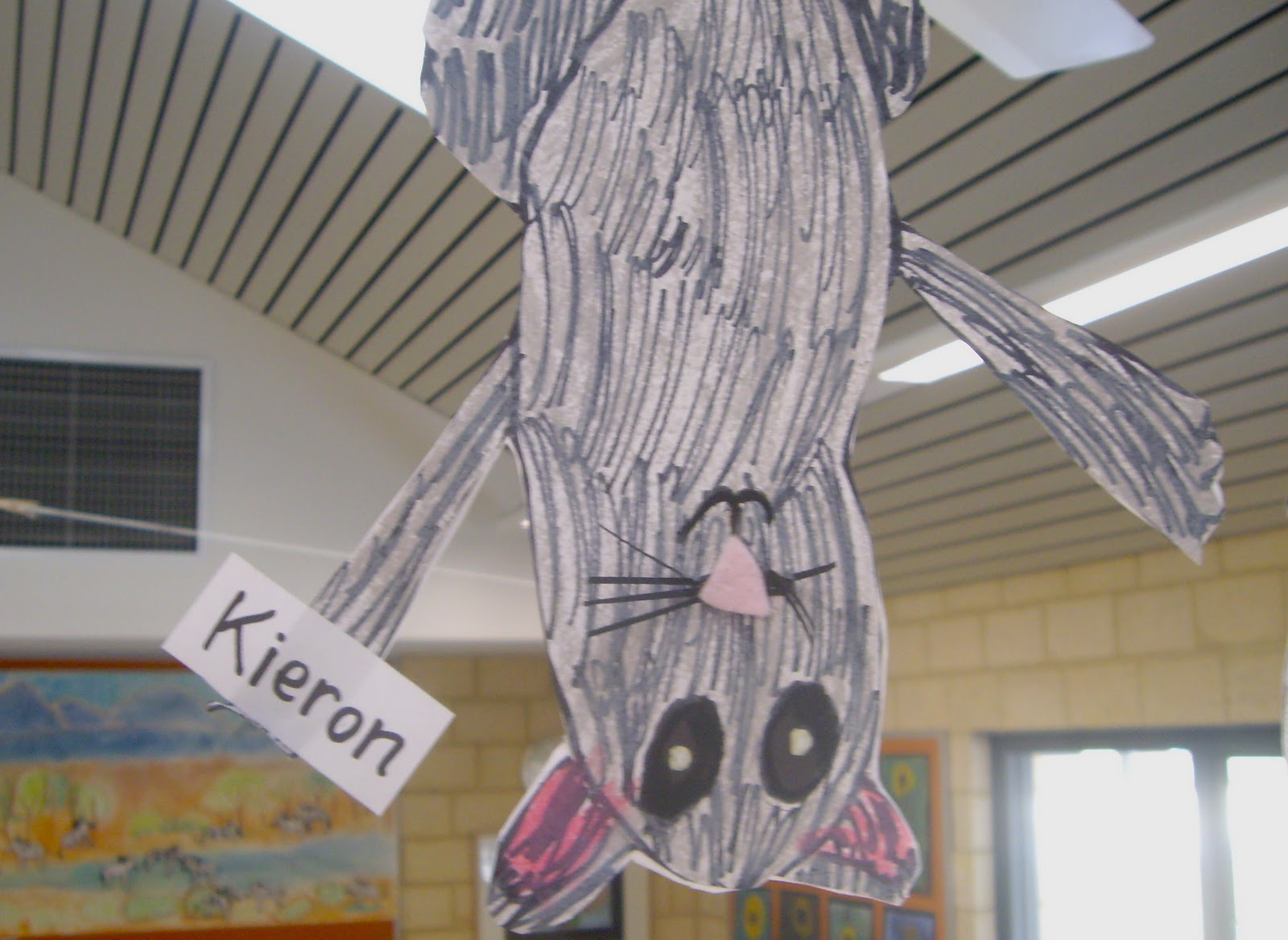 Use Your Coloured Pencils Possum Magic