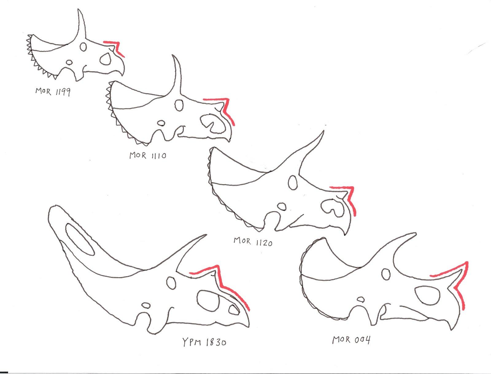 When Pigs Fly Returns Torosaurus Latus Is Not Triceratops Sp