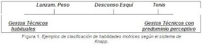 Tema 9: Habilidades, destrezas y tareas motrices. Concepto, analisis y clasificación. Actividades para su desarrollo