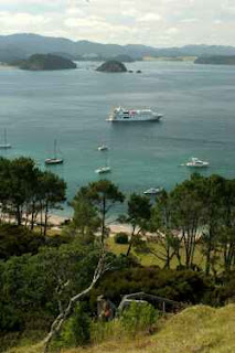 Oceanic Discoverer moored off Roberton Island as seen from the lookout