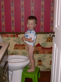 Shellem Family Potty Training