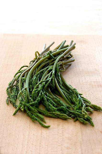 La raccolta degli asparagi