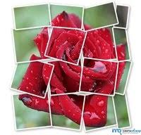Создание фотоэффектов для фото онлайн бесплатно.   Блог ...