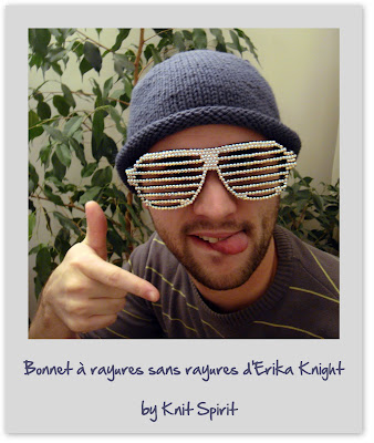 Tricot pour hommes Erika Knight
