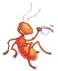 Dragonfly Treasure I Hate Ants