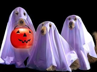 Happy Halloween! 2