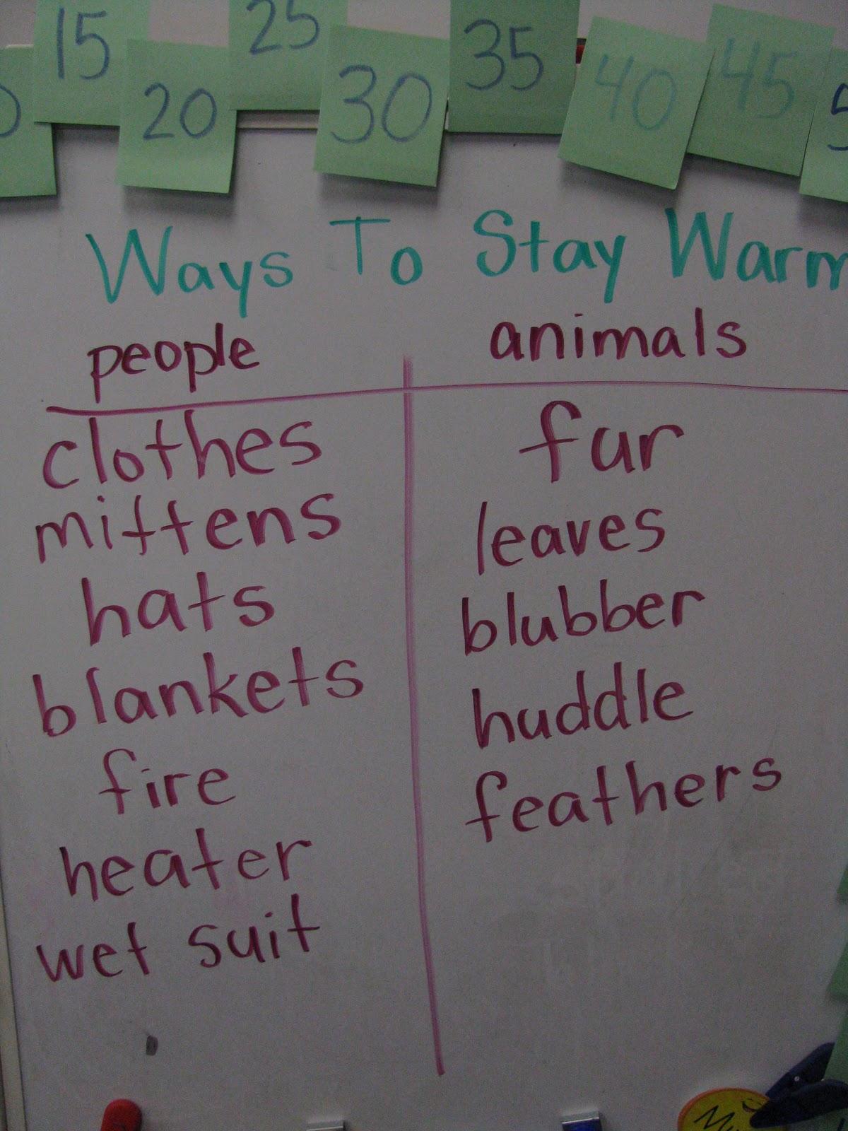 Tiller How Do Animals Stay Warm Blubber