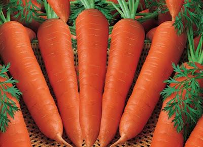 Fruits Buah Yang Perkembangbiak Secara Vegetatif Almi