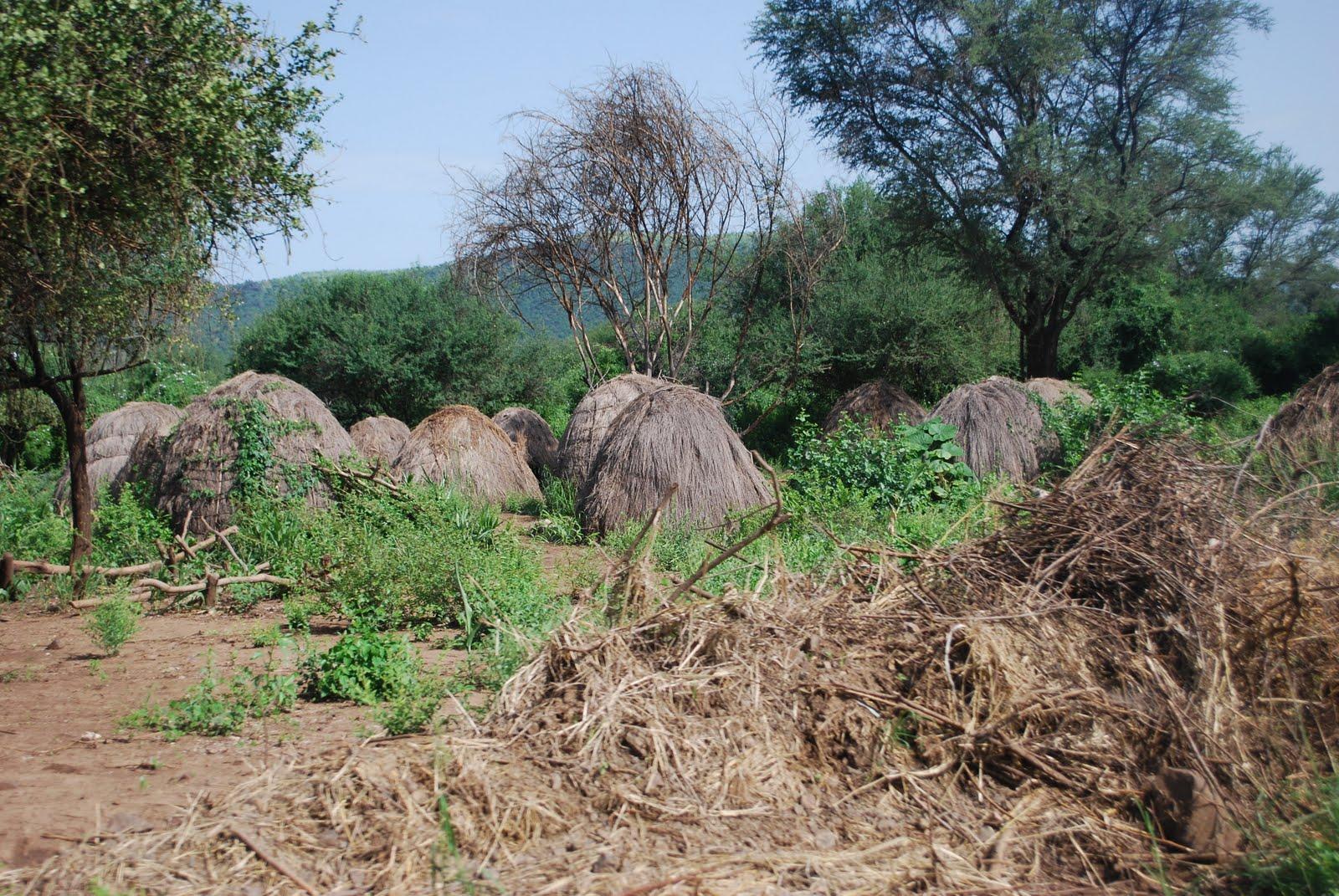 Mursi warriors - Mago National Park, Omo Valley, Ethiopia