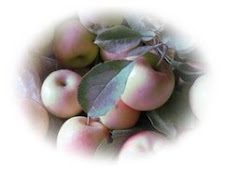 """ A word fitly spoken is like apples of gold in pictures of silver."" Prov. 25:11"