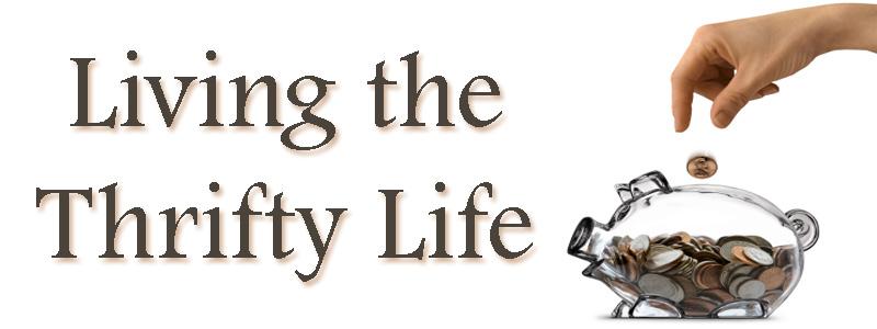 Live Life Dramatically Apparel By Ludlam Dramatics: Living The Thrifty Life
