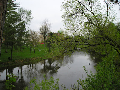 Owen Sound Farmers Market River