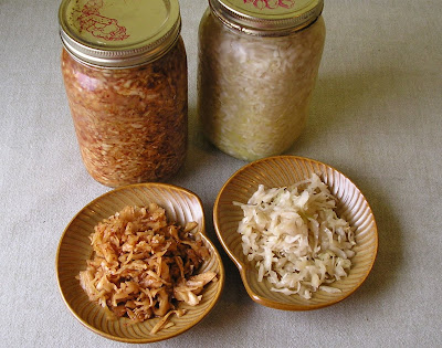Plain and Hot Sauerkraut in Jars