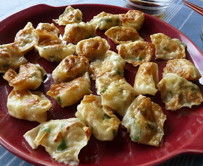 Potato and Green Onion Won Tons