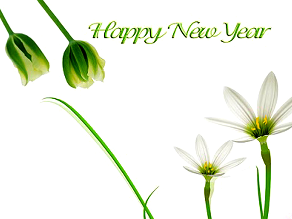 happy new year greetings in hindi memorable moment r celebrated . 1024 x 768.Greeting For New Year In Hindi