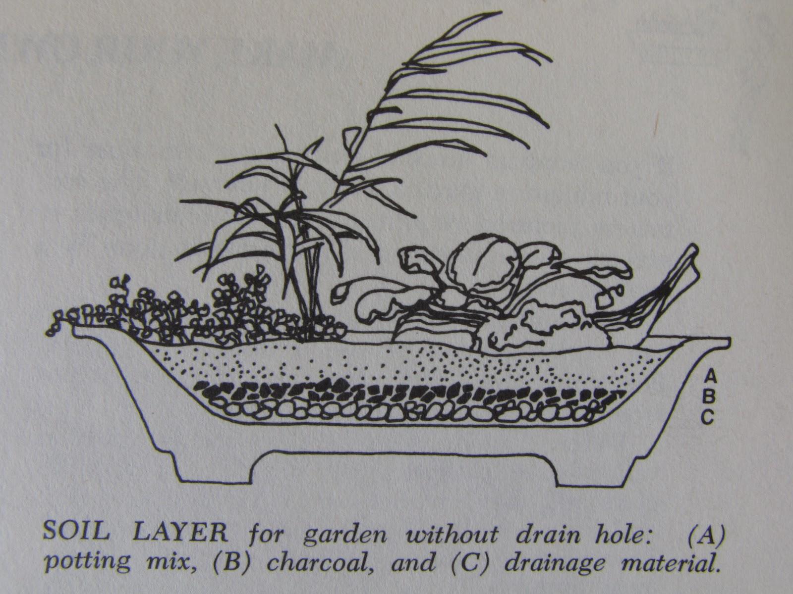 Lillabilly How To Make A Terrarium