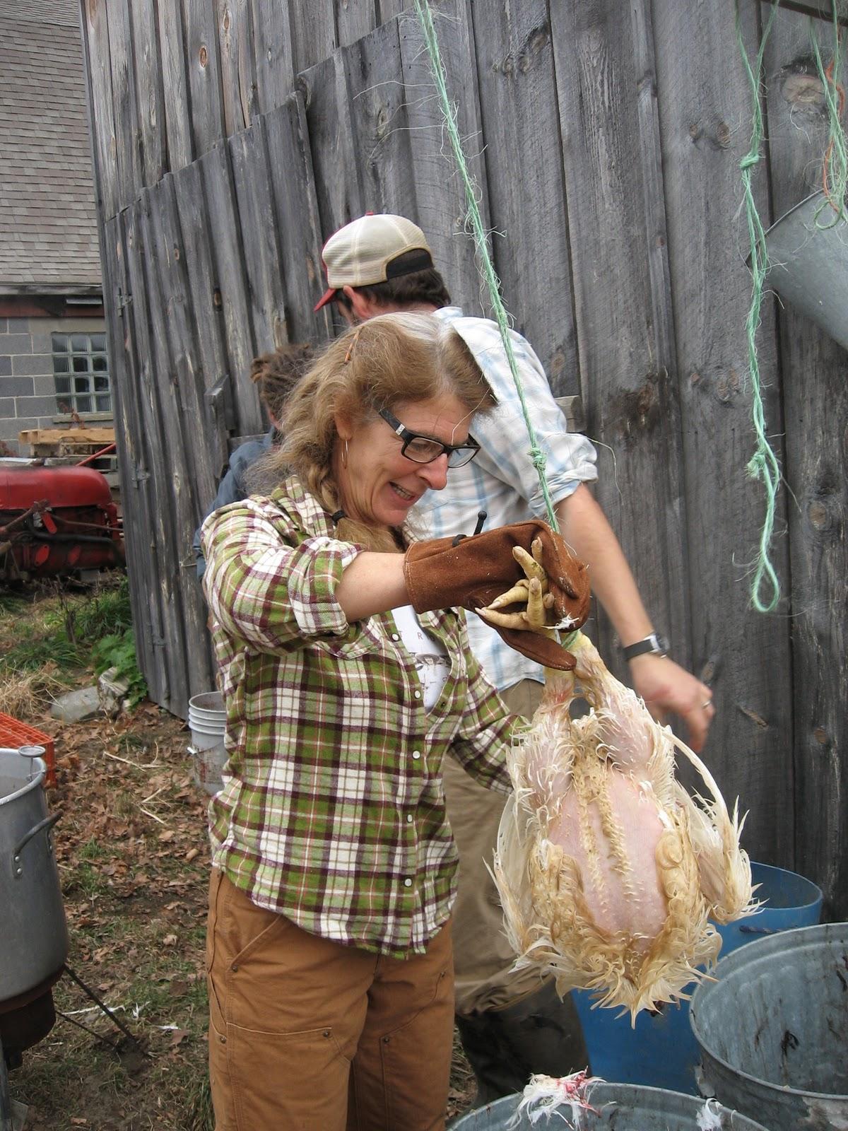 Hay! Ewe! Root For The Farmers!: Good-bye Broiler Bird