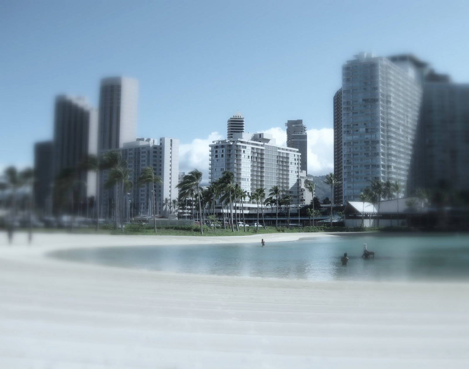 The Hawaiian Sybarite: Quality of Life Improvement 6: The ...
