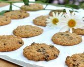 September - Oatmeal Raisin Cookies