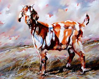 Mischief - Indigenous Goat
