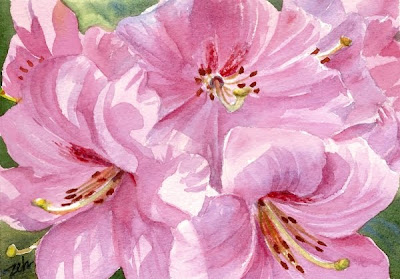 Pink Azalea Blossoms watercolor painting by Janet Zeh