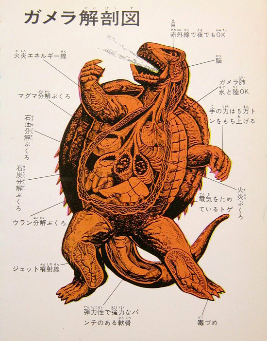 Illustrated anatomy of Gamera and foes, from Kaijū-Kaijin Daizenshū movie monster book series, by Pink Tentacle.