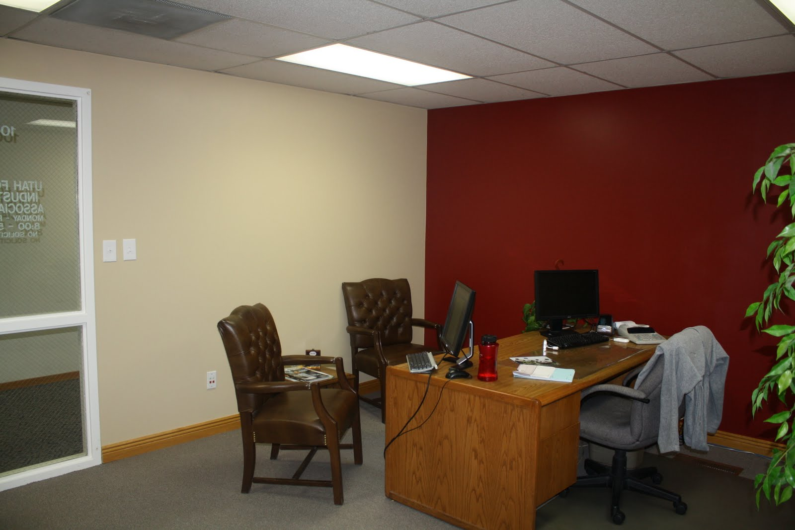 The Steeds: Painting the Office Red