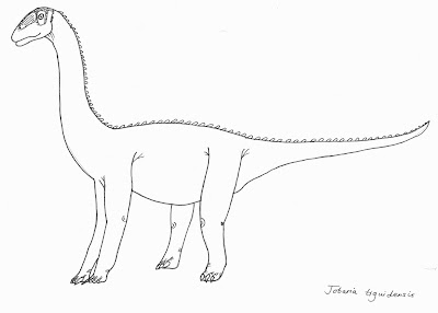 giraffatitan coloring pages | ART Evolved: Life's Time Capsule: The Sauropod Gallery