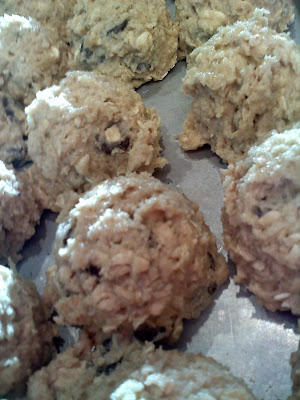 Chocolate Chip Oatmeal Cookies Ready to be frozen by a vision to remember