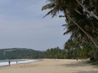 mirissa beach plage sri lanka blog voyage