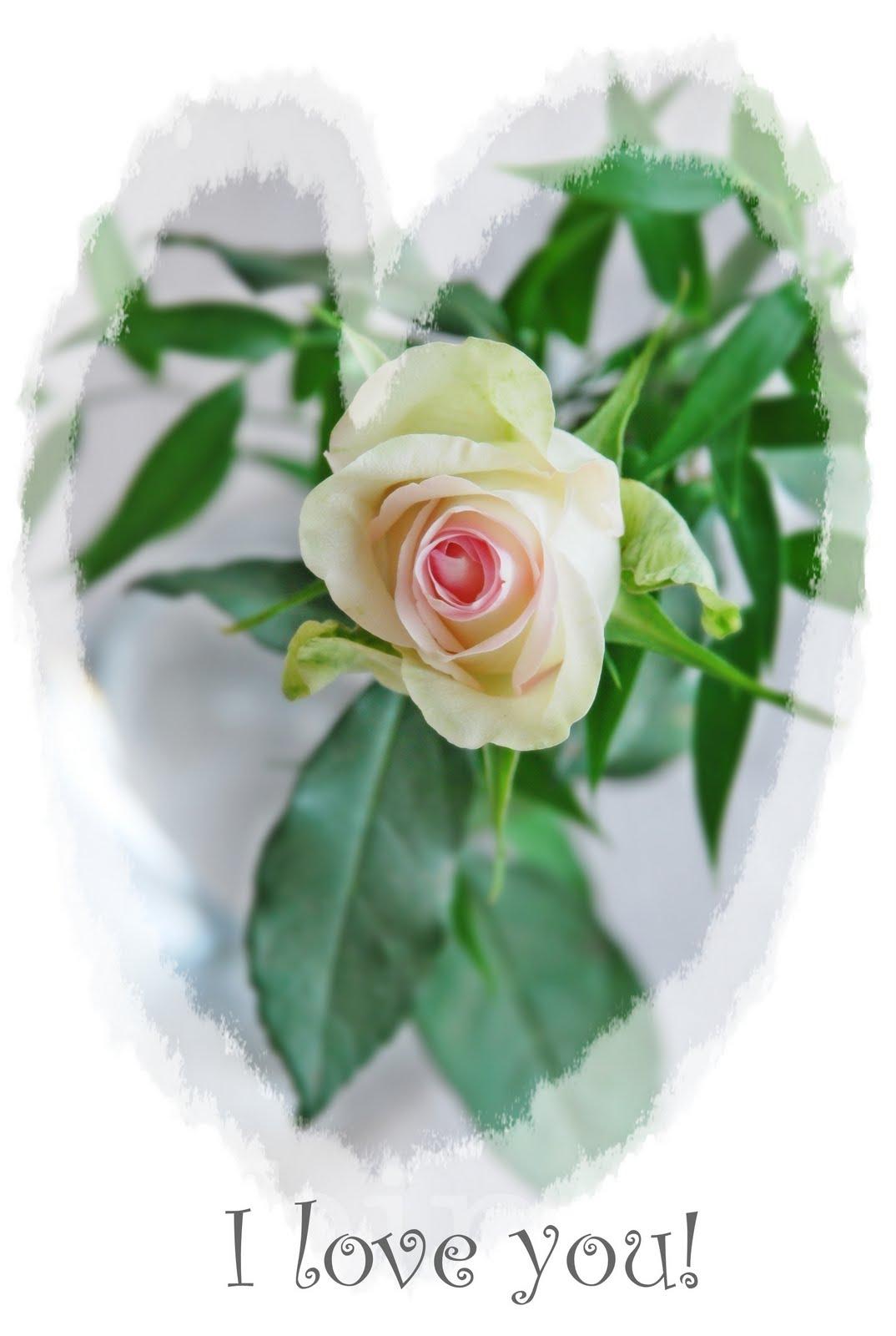 bröllopsdag 10 år present 10 år av lycka och kärlek bröllopsdag 10 år present