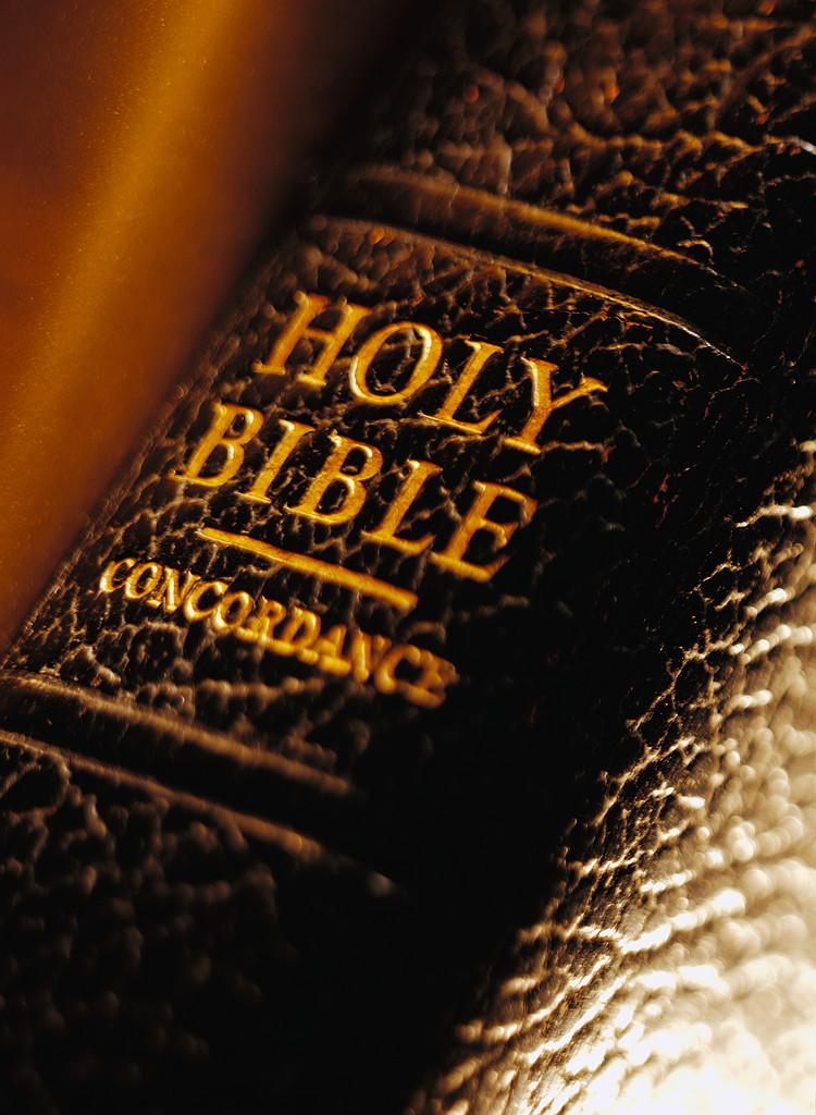 Bible Translation and Study