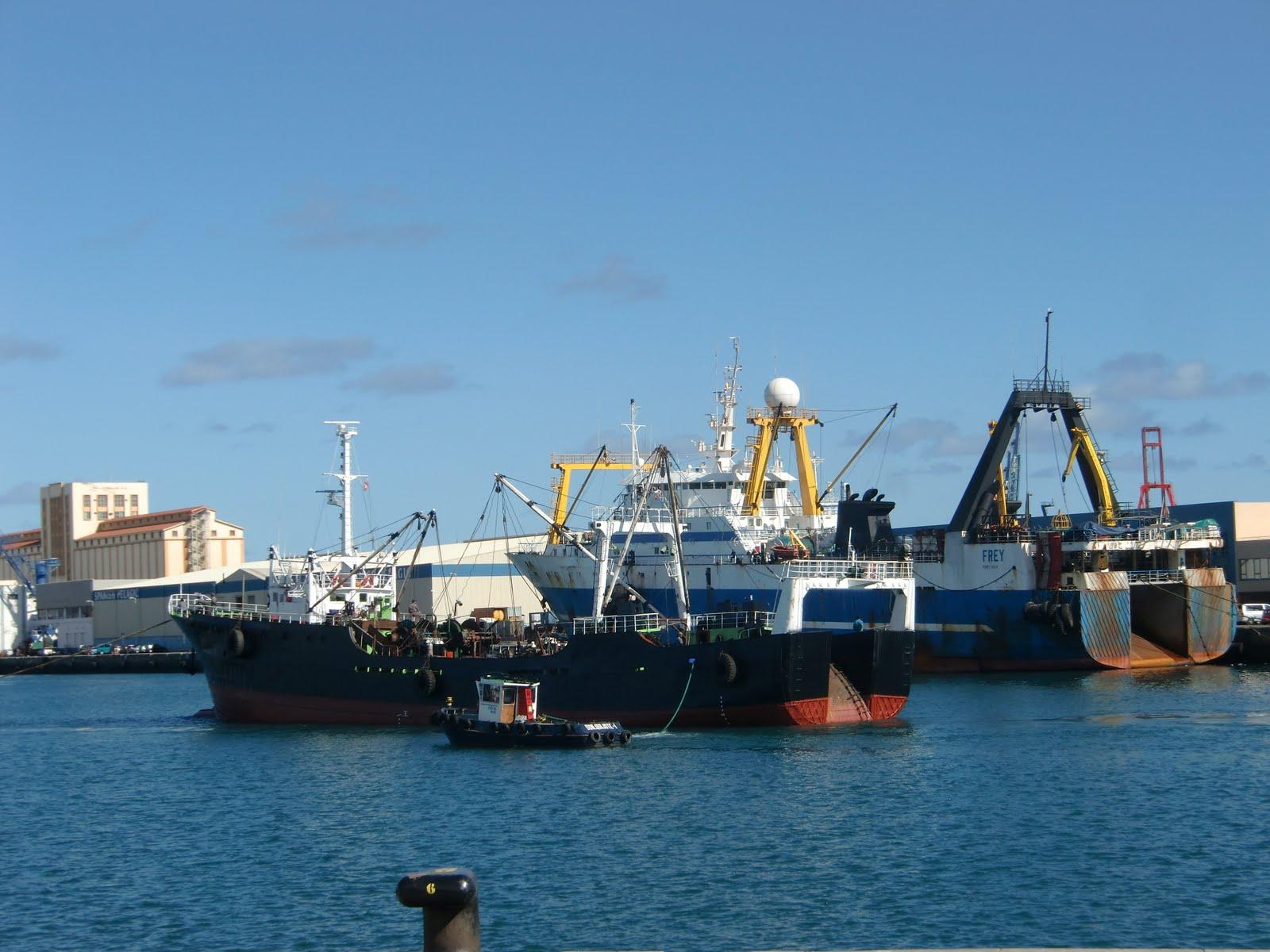 Islas canarias foto buque pesquero puerto de las palmas - Fotografia las palmas ...