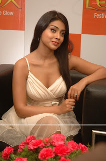 South Indian Sexy Girls Shreya Hot Pictures