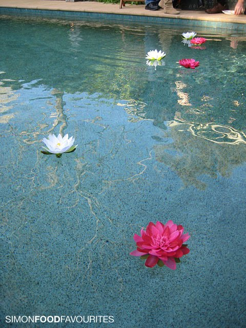1000 Ideas About Floating Pool Decorations On Pinterest