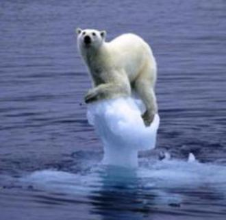 Círculo vicioso: el calentamiento global empeora al derretir masas de hielo