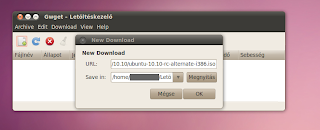 Ubuntu download manager