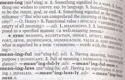 Dissertation dictionary meaning